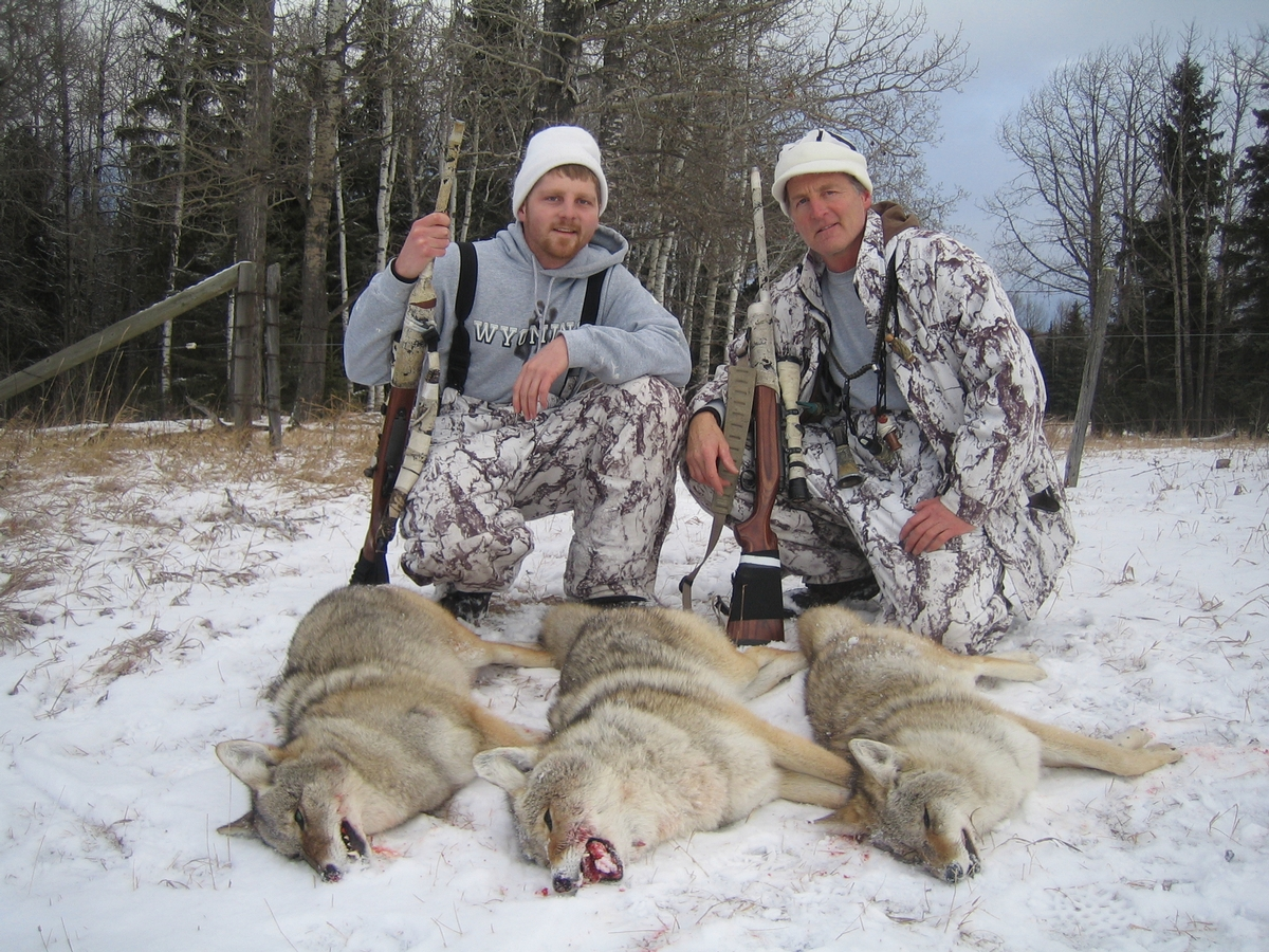 Central Alberta Coyote Hunting